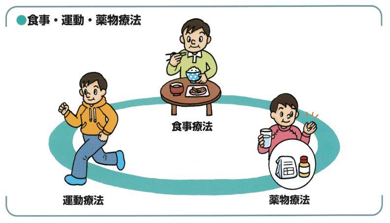 食事・運動・薬物療法